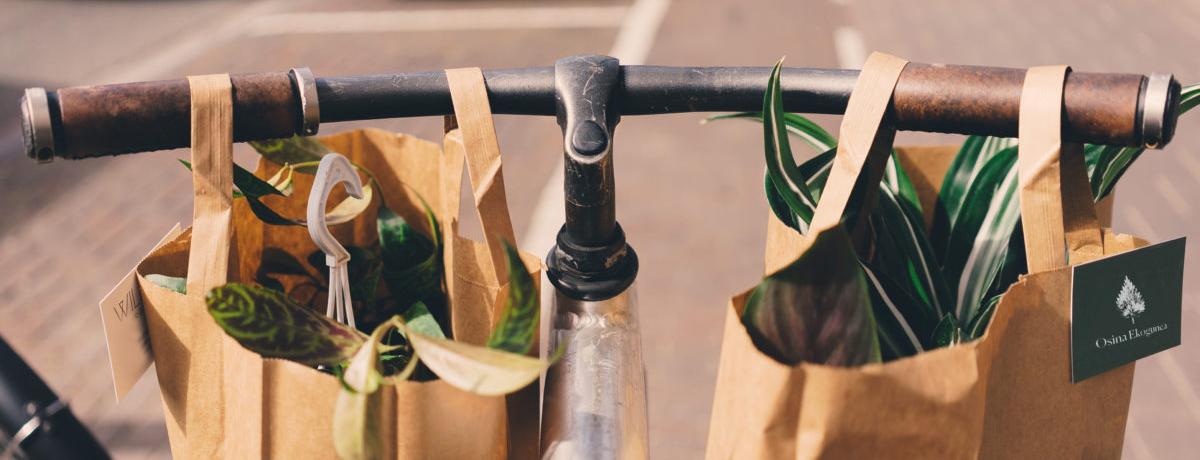 bicicleta vintage con bolsas de la compra